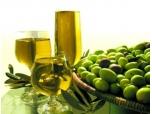 Die Herstellung von Olivenöl