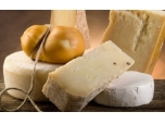 Istrian cheese